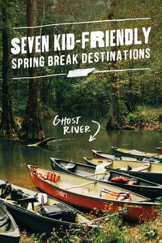 Find adventure your kids will love, from a safari park to exhibits and museums, when you spring break in West Tennessee.