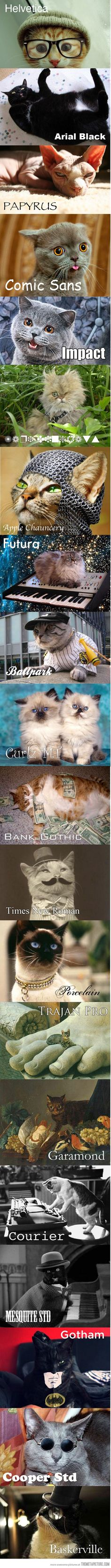 Fonts as cats.