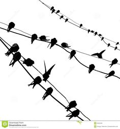 Silhouette Migrating Swallow Royalty Free Stock Image - Image: 6452426