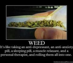 I have anxiety and depression I quit my pharma meds and went strictly to weed it does the same and more without the shitty side effects. Your ignorant if you think just because the government says it's bad it's a horrific drug. It's not its medicine no matter how many times your told it's evil. It can do so many good things. Quit listening to the government they have lied about so much make your own opinions!