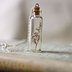 glass vial made into necklace keepsake ... interesting
