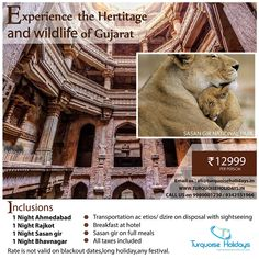 🚘Transportation 🏨Accommodation 🥗Meals 🔦sightseeing Best and Unbeatable Price, Book Now. Holiday Search, India Holidays, Holiday Packages, Price Book, 1st Night, Transportation, National Parks, Wildlife, Packaging