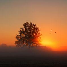 dawn breaks by Dgs  on 500px
