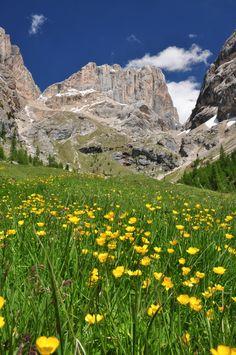 Marmolada, Alps Italy...