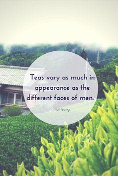 Black tea, oolong, white tea, from darjeelings to senchas, each tea has it's own shape and color.