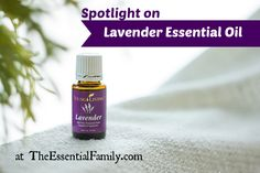 "Lavender essential oil isn't called ""the Swiss Army Knife of essential oils for nothing!"".  In fact no matter what the situation, there are hundreds of known benefits of true Lavender essential oil, so ""when in doubt, use Lavender!""  www.TheEssentialFamily.com"