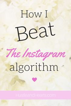 Has the Instagram algorithm affected you? It doesn't have to! Try out these 5 strategies for beating the Instagram algorithm and boosting your engagement!