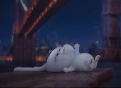 Cute Disney Wallpaper, Cute Cartoon Wallpapers, Wallpaper Iphone Cute, Rabbit Wallpaper, Bear Wallpaper, Cartoon Memes, Funny Cartoons, Snowball Rabbit, Cute Bunny Cartoon