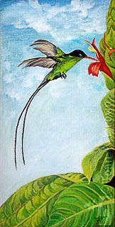 Jamaican National Bird Acrylic painting of Dr.   Bird (Swallow-tail Humming Bird) by Joan A Brown