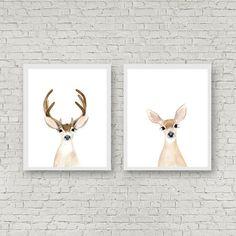buck and doe deer couple Deer Antler buck Woodland by zuhalkanar