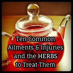 10 Common Ailments and Injuries and the Herbs to Treat Them