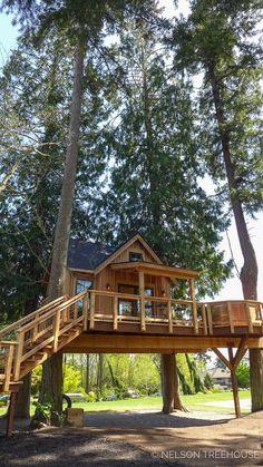 28 best tree house images in 2019 rh pinterest com