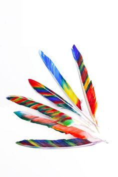 Fancy Feathers: Color white feather using markers and rubbing alcohol