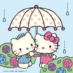 The Official Home of Hello Kitty & Friends - Sanrio Sanrio Hello Kitty, Hello Kitty Crafts, Hello Kitty Vans, Hello Kitty Themes, Cat Character, Character Design, Hello Kitty Wedding, Hello Kitty Pictures, Kitty Images