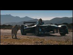 Drag Race: Kan en gepard sprinte fra en Formula E Entrepreneur, Commercial, Formula E, Cute Cat Breeds, All About Music, Branding, Marketing, Cheetah, Social Media