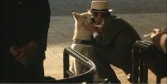 8 de abril: dia do fidelíssimo cão Hachiko, uma história de amor para a eternidade