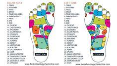 reflexology chart chinese