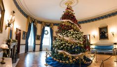 2015 White House Christmas in Pictures: Blue Room