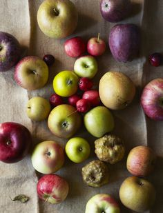 hungry ghost food + travel - new - sheep's nose and old maids winter. the forgotten fruits.LOVE APPLES!