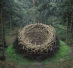 nature land art earthworks - Google Search