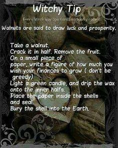 Walnut Wealth Spell