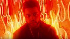"""Veja o clipe de """"Party Monster"""", de The Weeknd #Cantor, #Cantora, #Clipe, #Festa, #M, #Música, #Noticias, #Nova, #NovaMúsica, #Vídeo, #Youtube http://popzone.tv/2017/01/veja-o-clipe-de-party-monster-de-the-weeknd.html"""