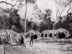 White, Village is in a woodland not far from a mountainous rainforest area at Bellenden Ker in Yidinjdji country c 1904 (Lands and Peoples, The Grolier Society Aboriginal Culture, Aboriginal People, Aboriginal Art, Aboriginal Education, Indigenous Education, Australian Aboriginal History, Stone Age People, Australian Aboriginals, Primitive Survival