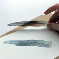Blue feather watercolor print