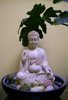 Abhaya Mudra | Buddha statue abhaya mudra, StillPoint Acupuncture, Nelson, New ...