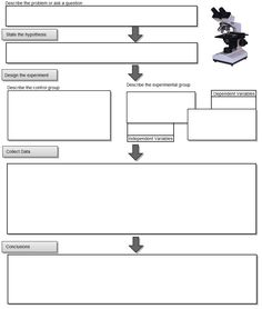 Exploring the Scientific Method Worksheet | Scientific Method ...