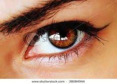 brown eyes photos - Google Search
