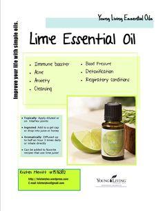 lime-flyer.jpg (1275×1650)