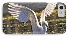 Snowy Egret Makes The Catch - Egretta Thula Phone Case by Bill And Deb Hayes