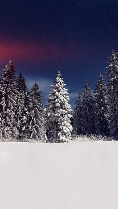 SNOW WINTER WOOD MOUNTAIN SKY STAR NIGHT FLARE WALLPAPER HD IPHONE
