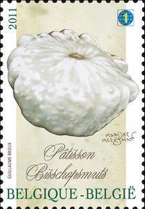 Vegetables of the past: Pâtisson - Bisschopsmuts