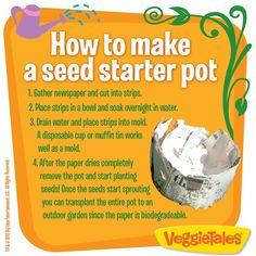 Seed starter pot