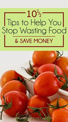 QUIT WASTING FOOD! Wasting food is wasting money. Start saving money (and food)…