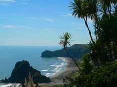 """Piha Beach New Zealand : When it comes to """"Piha"""" is the most you will find in New Zealand. Located on the west coast of the North Island about 40 kms away from the Auckland __________________ New Zealand Attractions, Hong Kong, New Zealand Image, North Island New Zealand, Auckland New Zealand, Travel Memories, China, South Pacific, Beautiful Beaches"""