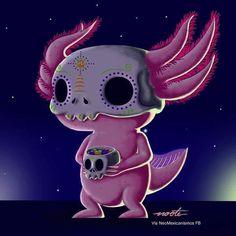 Vs Pink Wallpaper, Aztec Wallpaper, Screen Wallpaper, Cute Kawaii Animals, Cute Animal Drawings Kawaii, Fantasy Creatures, Mythical Creatures, Weird Looking Animals, Mexico Art