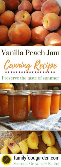 Vanilla Peach Jam Recipe for canning vanilla peach jam. I love canning peach jam, the flavor of summer is divine during the winter. Adding vanilla to peach jam - 20 Totally Homemade Jam Recipes Chutneys, Canning Peaches, Peach Jelly Recipe Canning, Canning Jam Recipe, Jelly Recipes, Peach Jam Recipes, Homemade Jam Recipes, Peach Preserves Recipe, Peach Marmalade Recipe
