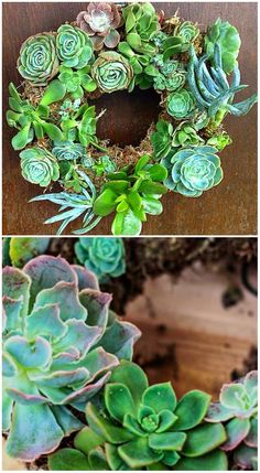 how to make your own succulent wreath