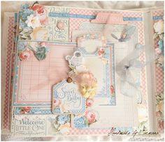 Baby first album ~ Precious memory