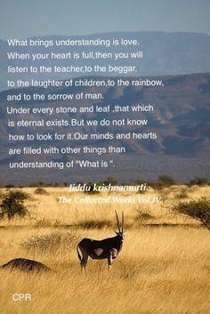 J Krishnamurti Quotes, Jiddu Krishnamurti, Consciousness Quotes, Higher Consciousness, Success Quotes, Life Quotes, Enlightenment Quotes, Positive Images, Self Realization