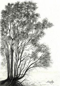 36 Best Tattoos Images Alder Tree Drawings Cute Tattoos