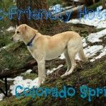 Getting to know Colorado Springs: Pet friendly accommodations