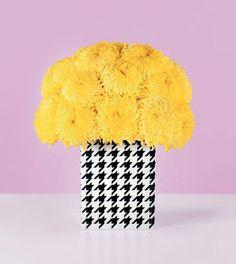 kalla flowers - Google Search