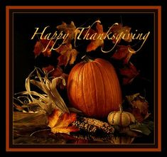 Happy Thanksgiving Wallpaper, Happy Thanksgiving Images, Thanksgiving Messages, Friends Thanksgiving, Thanksgiving Blessings, Thanksgiving Greetings, Vintage Thanksgiving, Thanksgiving Decorations, Holiday Wallpaper