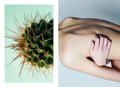 Denitsa Toshirova for 'Dismantle Exhibition', Edinburgh