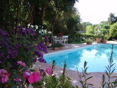 Eden Range Pavers and Pool Copings Pool Coping, Best Web, Pools, Range, Garden, Outdoor Decor, Design, Cookers, Garten