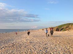 Tisvildeleje Hygge, Summer 2014, Sky, Beach, Water, Pictures, Animals, Outdoor, Travel